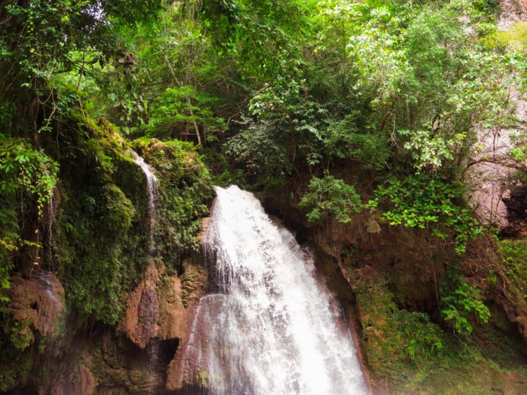 nature, Landscape, Philippines, Waterfall, Plants HD Wallpaper Desktop Background