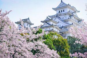 castle, Asian architecture, Cherry blossom, Landscape, Himeji Castle
