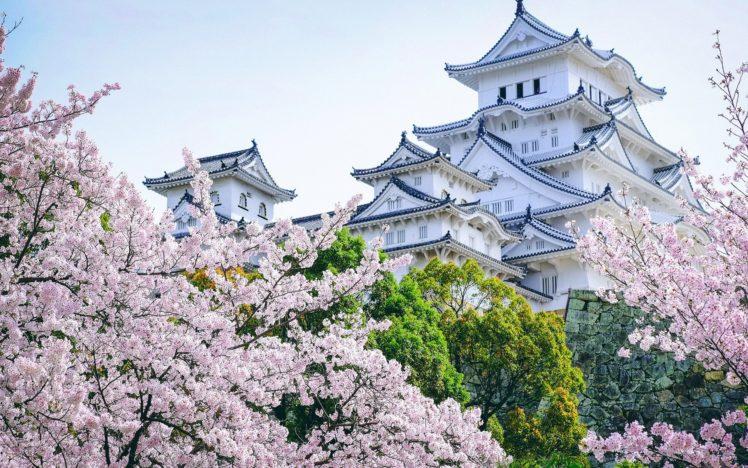 Castle Asian Architecture Cherry Blossom Landscape Himeji Castle