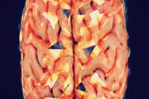 brain, Abstract, Glitch art