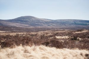 desert, Landscape, Nature