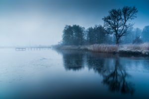water, Trees, Frozen lake