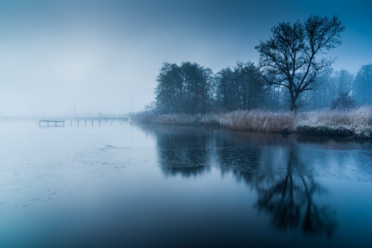 Water Trees Frozen Lake Hd Wallpapers Desktop And Mobile Images