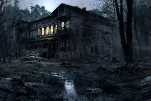 creepy, House, Lights, Nature, Trees, Forest, Night, Dark, Mud, Photography, Photoshop