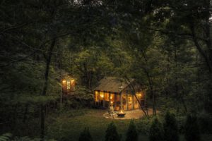 house, Lights, Nature, Trees, Forest, Cabin, Fire, Wood