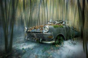 car, Wreck, Vehicle, Skeleton
