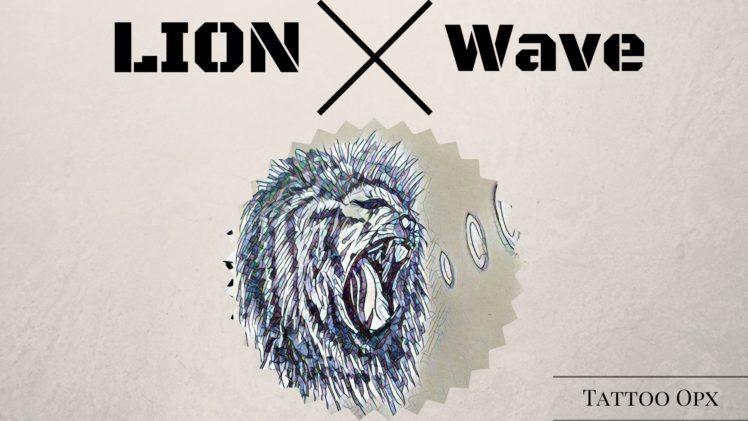 lion, Cat HD Wallpaper Desktop Background