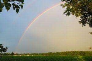 rainbows, Farm