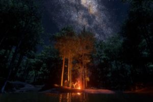 Rockstar Games, Red Dead Redemption 2, Forest, In game, Star trails, Night sky, Campfire, Stars