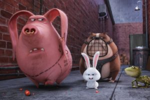 The Life of Pets (Movie), CGI, Rabbits, Pigs, Dog