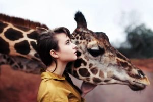 women, Brunette, Animals, Giraffes, Blue eyes, Women outdoors, Shirt
