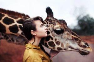 women, Brunette, Animals, Giraffes, Blue eyes, Women outdoors, Shirt