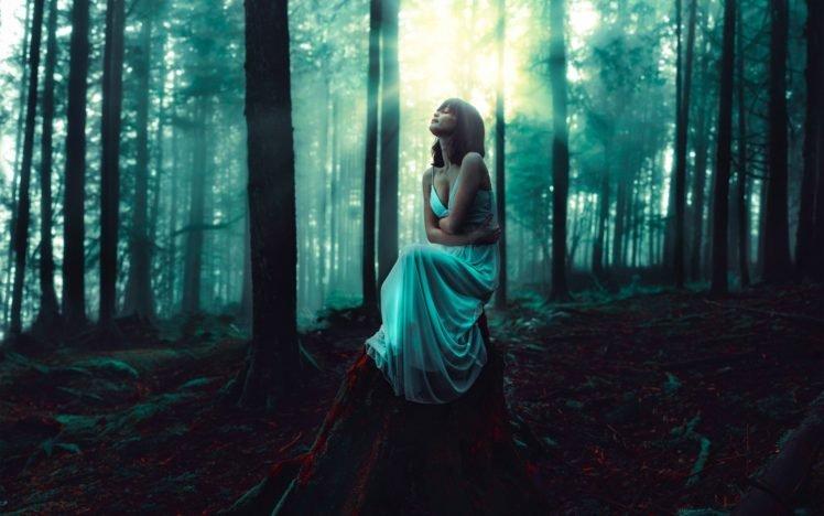 women, Model, Brunette, Long hair, Nature, Trees, Forest, Closed eyes, Women outdoors, Sitting, White dress, Sunlight, Tree stump, Dark, Moss HD Wallpaper Desktop Background