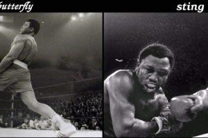 Muhammad Ali, Boxing, Sports