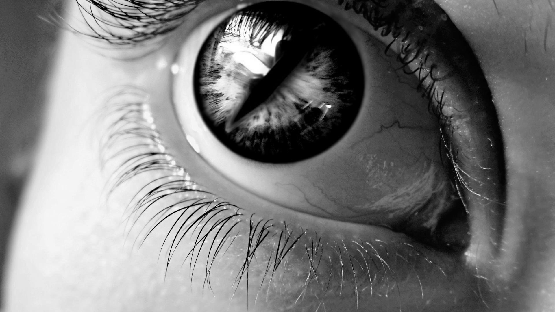 Women eyes monochrome eyelashes hd wallpapers desktop and mobile images photos - Eye drawing wallpaper ...
