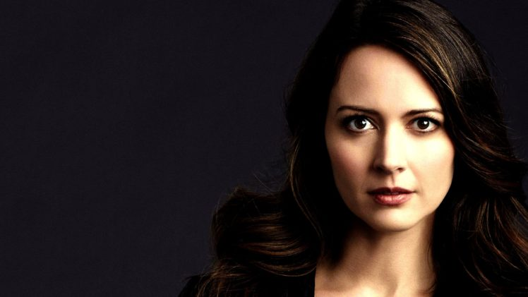 Amy Acker Root Character Person Of Interest Hd Wallpapers Desktop And Mobile Images Photos