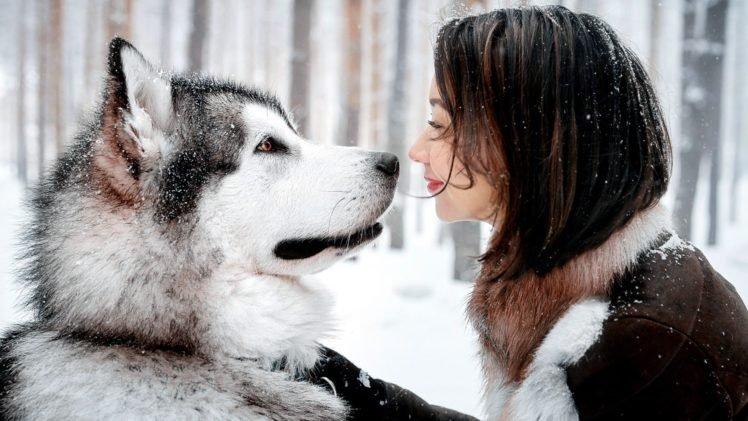 animals, Women outdoors, Smiling, Alaskan Malamute, Water, Dog, Night, Snow HD Wallpaper Desktop Background