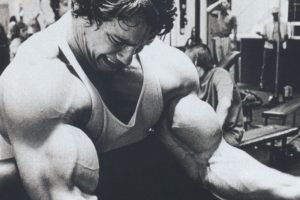 Arnold Schwarzenegger, Bodybuilder, Working out, Exercise, Muscles
