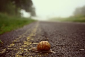 road, Blurred, Snail, Worms eye view