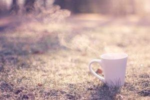 cup, Sunlight