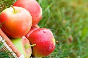 apples, Food