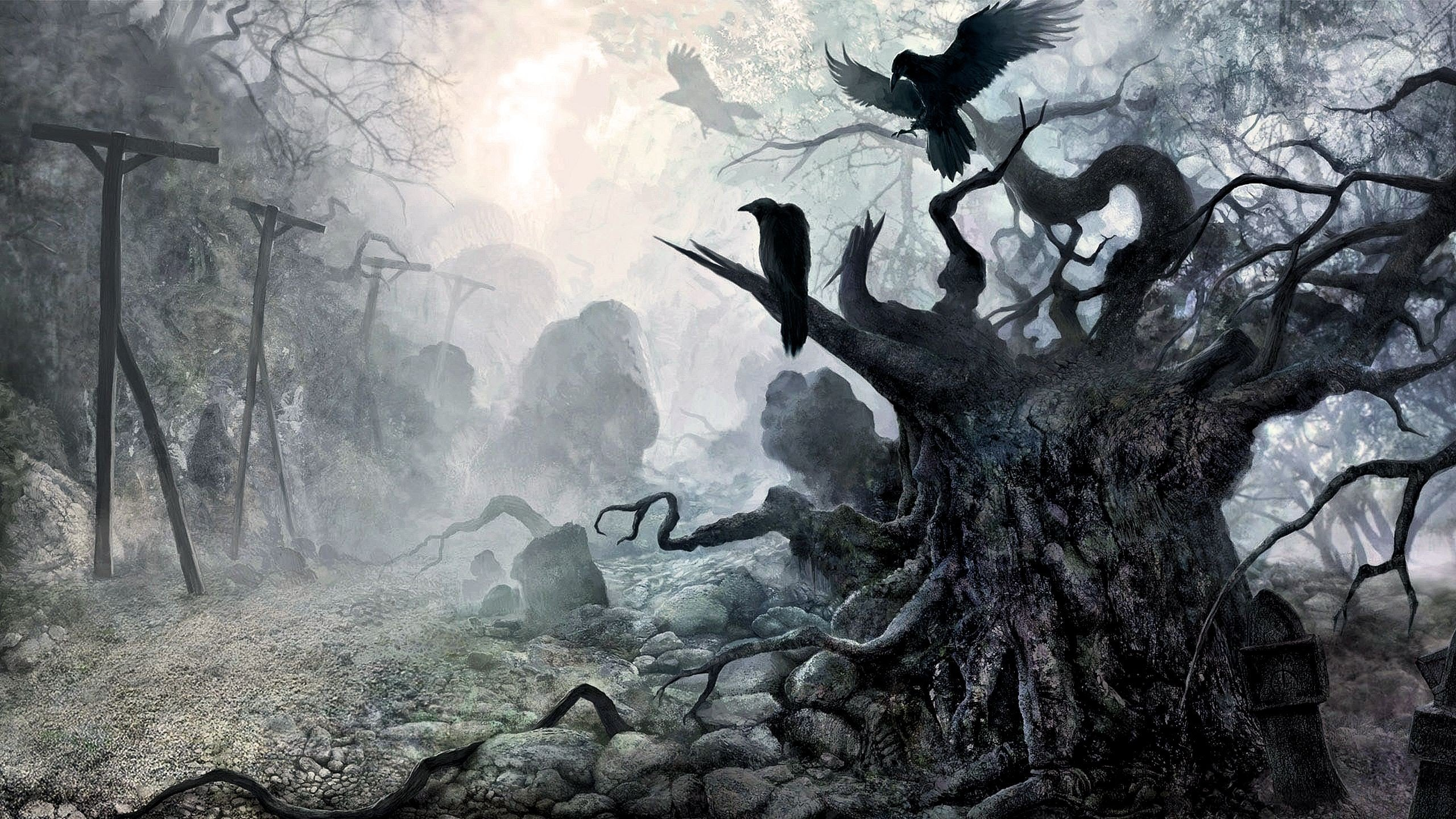 Vikings Mythology Wings Crow HD Wallpapers Desktop And Mobile