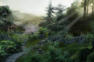garden, Sun rays