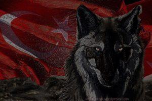 wolf, Bozkurt, Turkish, Turkey, Flag, Fascism