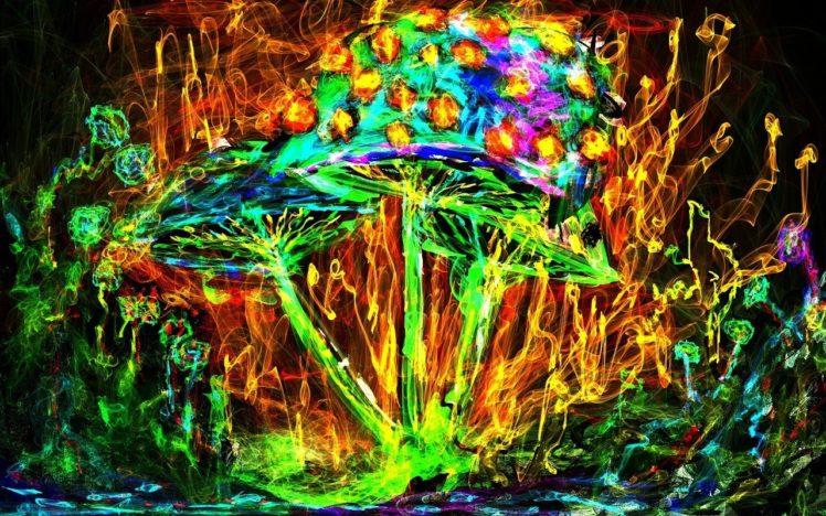 psychedelic, Mushroom HD Wallpaper Desktop Background