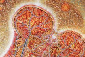 kissing, Brains