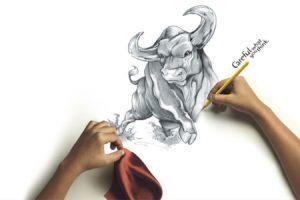 drawing, Bull
