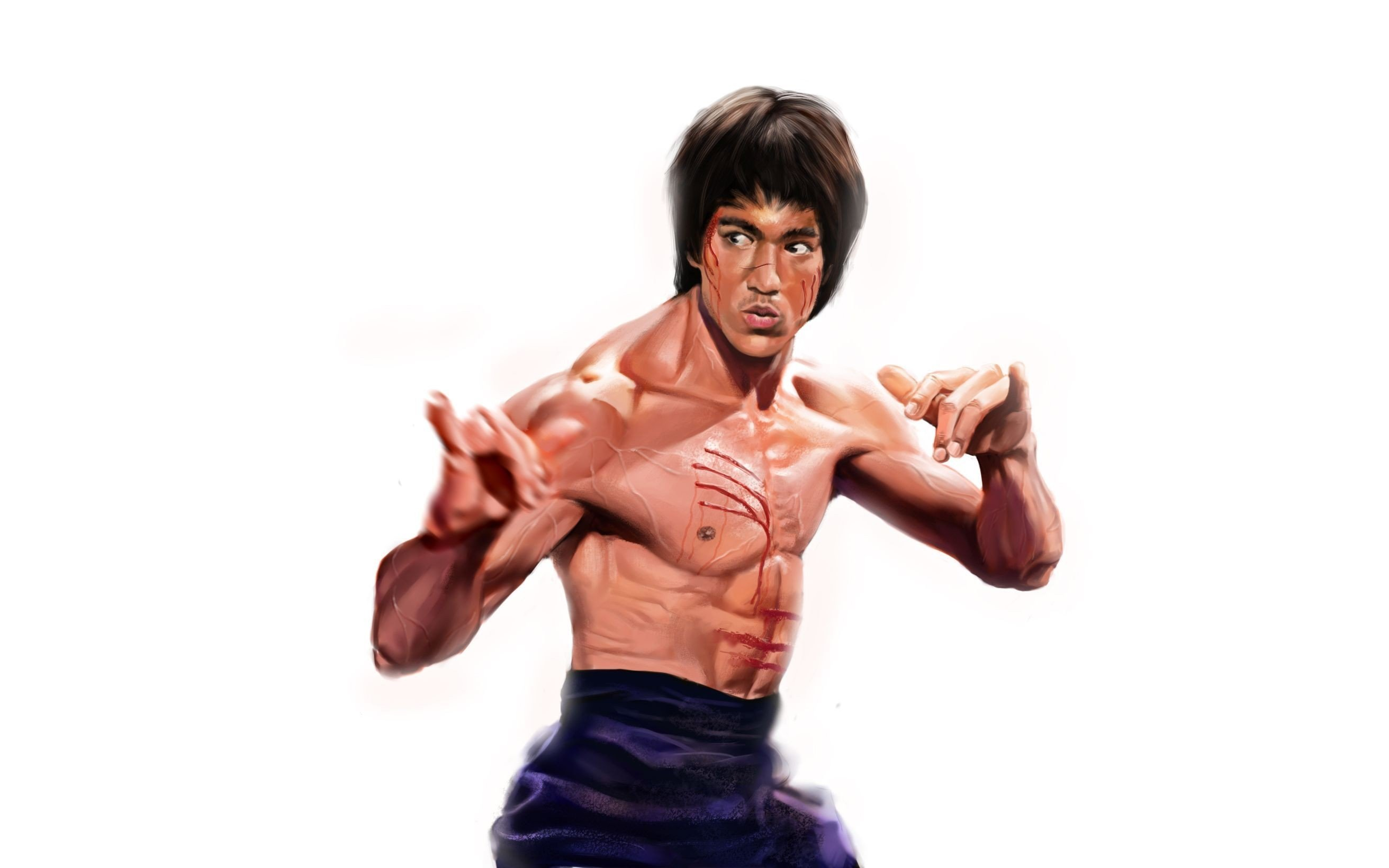2560x1600 bruce lee desktop - photo #10