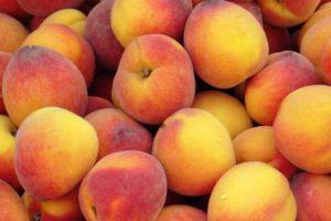 fruit, Peaches