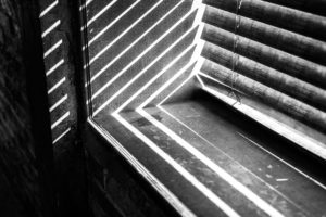 photography, Monochrome, Window sill, Sunlight