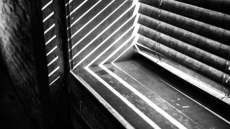 photography, Monochrome, Window sill, Sunlight HD Wallpaper Desktop Background