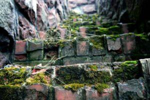 stairs, Worms eye view, Moss, Bricks, Photography, Macro, Depth of field