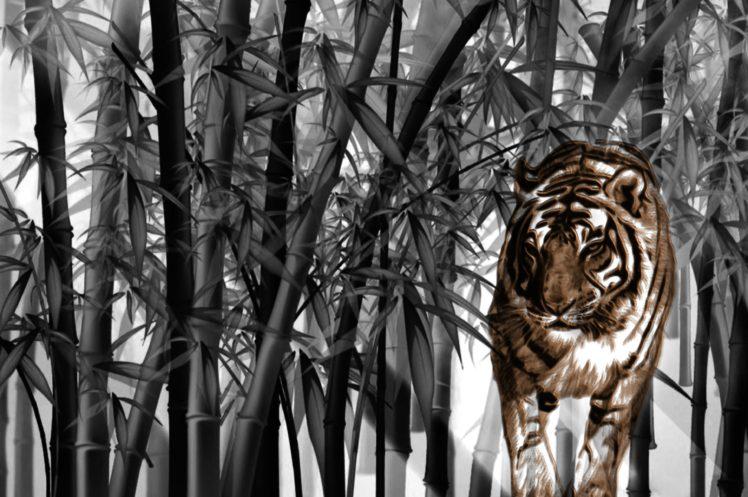 tiger, Big cats, Bamboo HD Wallpaper Desktop Background