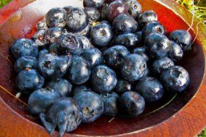 blueberries, Fruit