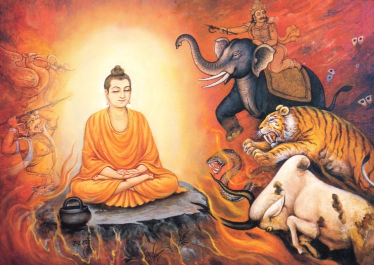 Buddha, Enlightenment HD Wallpaper Desktop Background