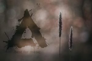 music, Aimp, Music Life AIMP Wallpaper