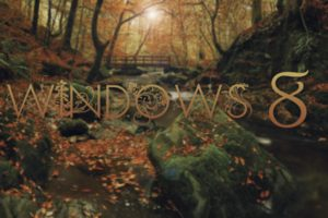 window, Trees, Microsoft Windows