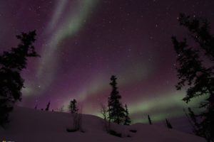 National Geographic, Snow, Trees, Aurorae