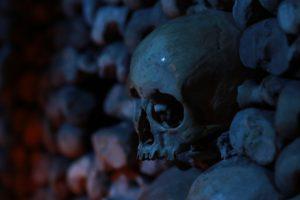 skull, Bones, Depth of field, Dark