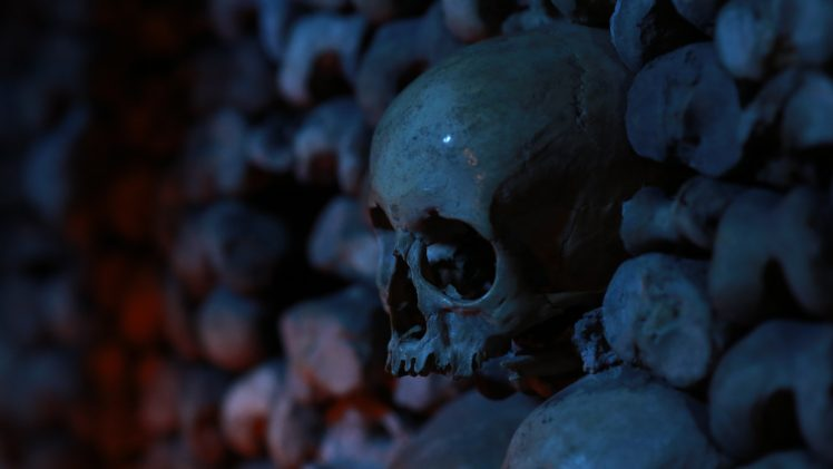 skull, Bones, Depth of field, Dark HD Wallpaper Desktop Background