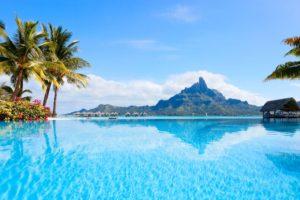 palm trees, Swimming pool