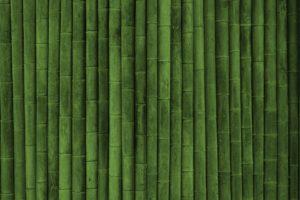 minimalism, Bamboo