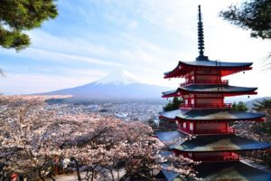 Japan, Asian architecture, Mount Fuji, Cherry blossom