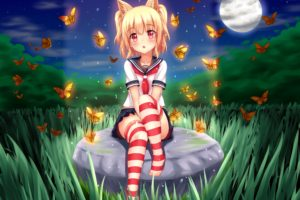 short hair, Blonde, Cat girl, Anime, Anime girls, School uniform, Skirt, Stockings, Animal ears, Grass, Night, Moon, Butterfly, Thigh highs