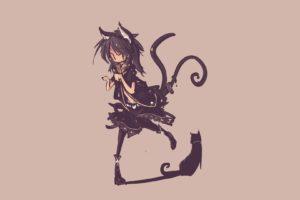 original characters, Nekomimi, Neko loli