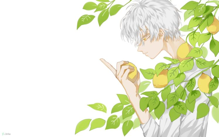 white hair, Original characters, Lemons HD Wallpaper Desktop Background
